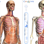 Google's New Moonshot Project: the Human Body